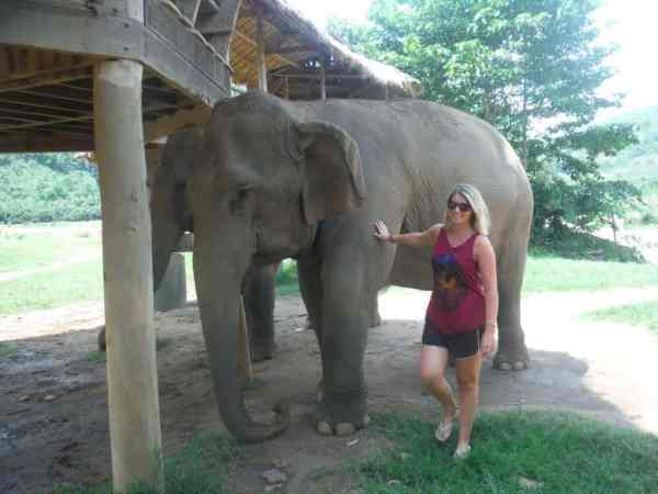 best things to do in Chiang Mai, elephant nature park