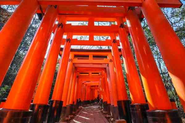 kyoto day trip from kobe japan