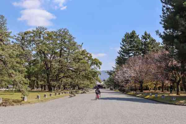 Kyoto 1 Day Itinerary, Kyoto day trip itinerary Kyoto Park