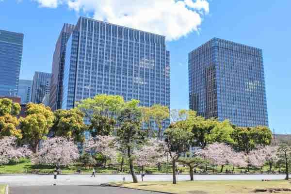 kooky gaien national garden japan