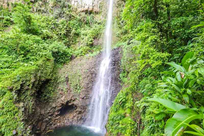 unique things to do in Dominica, middleham waterfall in Dominica in middle of rainforest