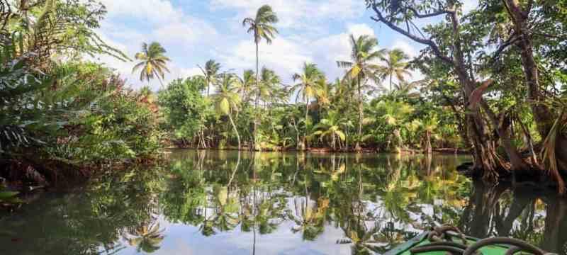 Dominica Travel