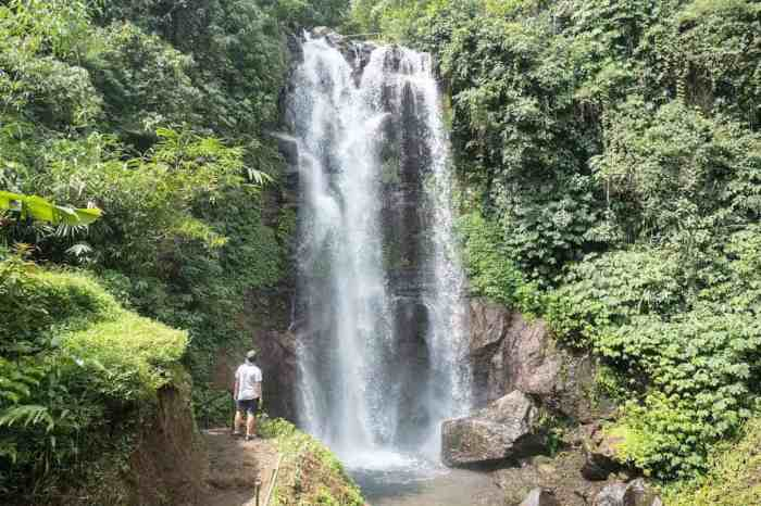 Munduk Waterfall | best places to travel in Asia in July and August