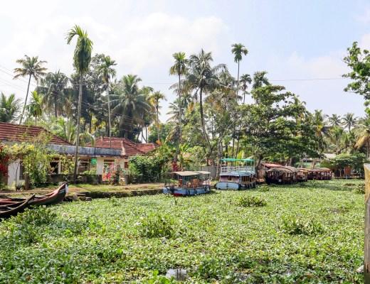kerala backwaters | 2 week south india itinerary