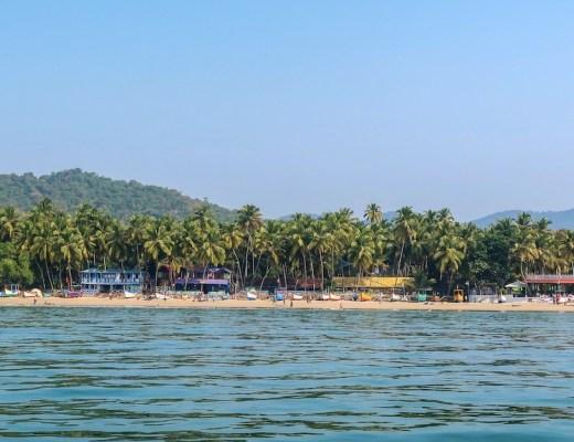 Palolem Beach Goa Trees and Ocean
