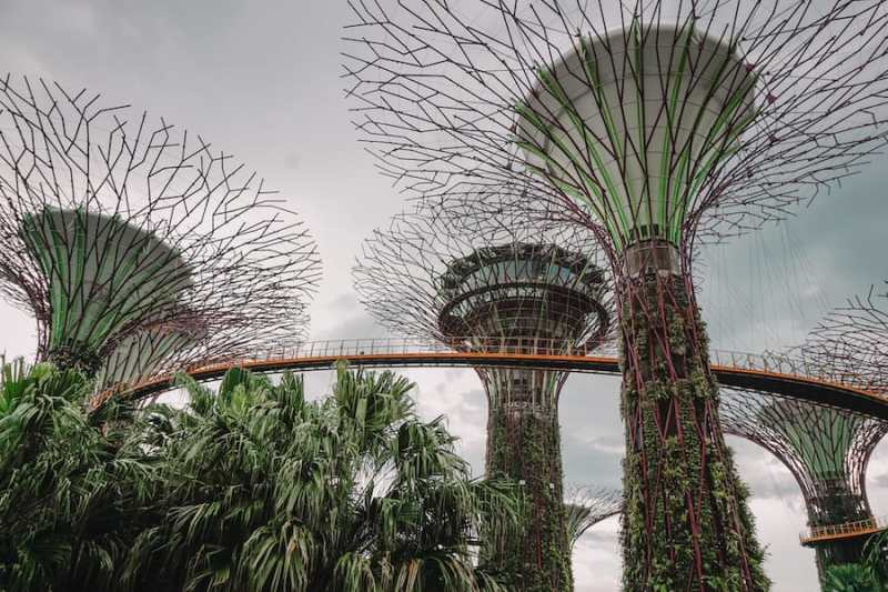 One Day in Singapore, Gardens by the bay