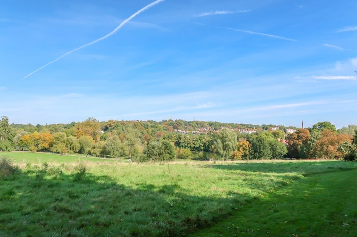 Things to do in Hampstead, Hampstead Heath