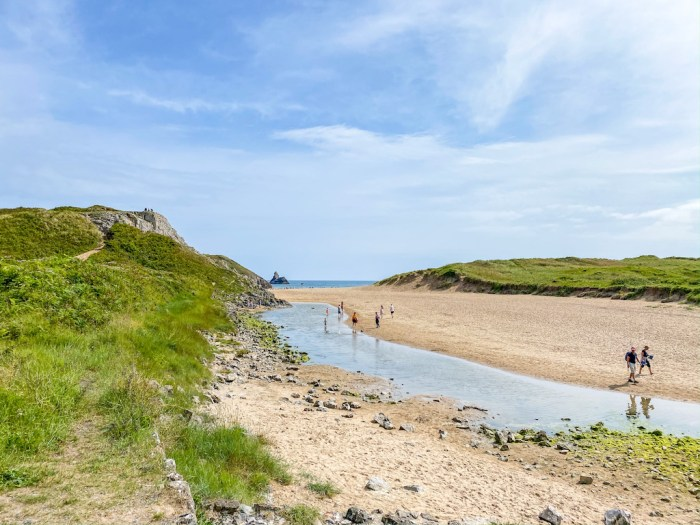 Bosherston Lilly Ponds, Broad Haven South Beach