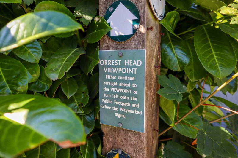 Orrest Head Walk, Orrest Head Path