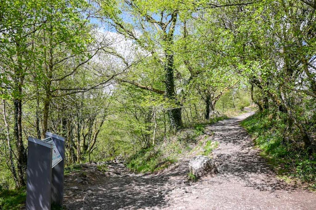 Brecon Beacons Waterfalls Walk Footpath
