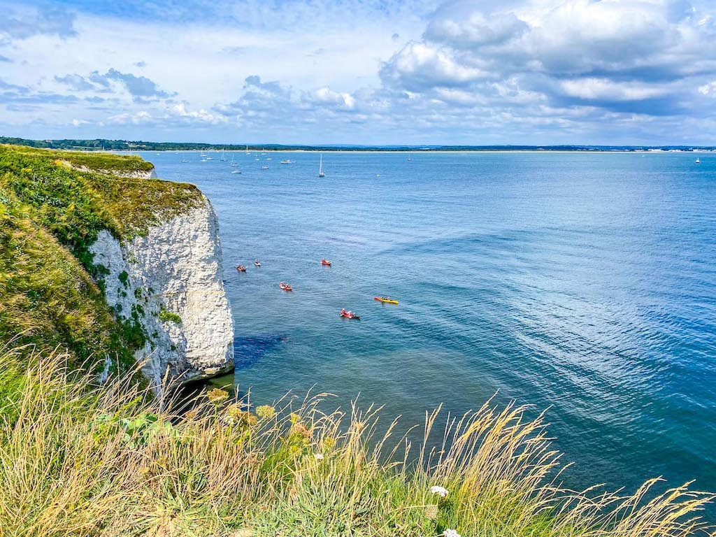 Old Harry Rocks Viewpoint