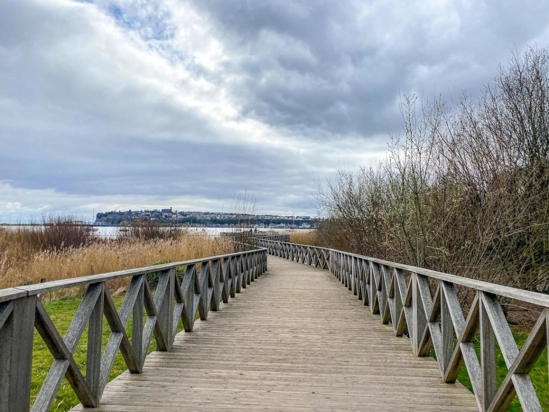 Things to do in Cardiff, things to do in Cardiff Bay, Cardiff Bay Wetlands Reserve