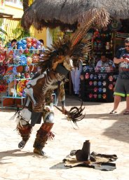 """A """"native"""" performer in the market."""