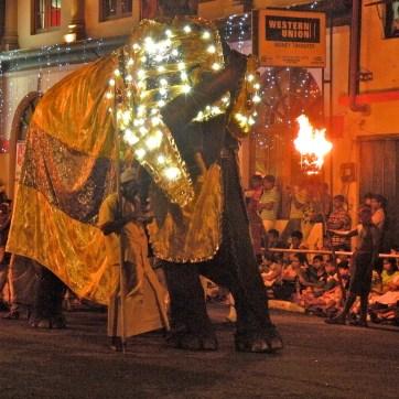Elephant shuffle
