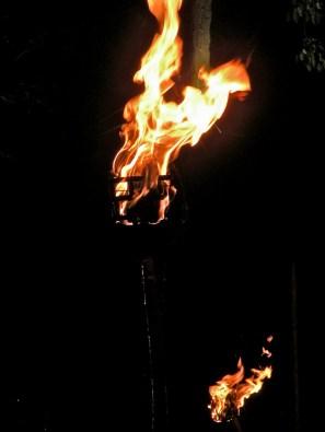 Flame Baskets Flare