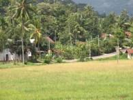 Steep hill, a bend, a village