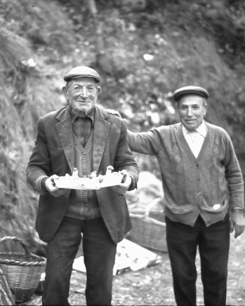 I wonder how many years these two old guys had been selling late autumn mushrooms on that bend in the road near Coll de Nargo, Spanish Pyrenees?
