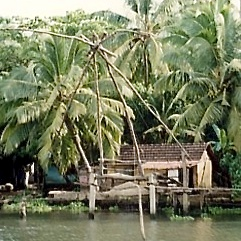 Life on the Backwaters - Home Jetty