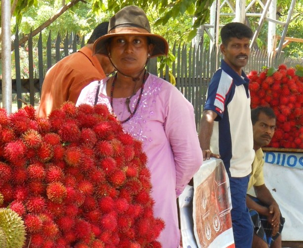 This young woman stood out among the boisterous male rambutan sellers on Havelock Road. I'm sure she's the farmer's wife.