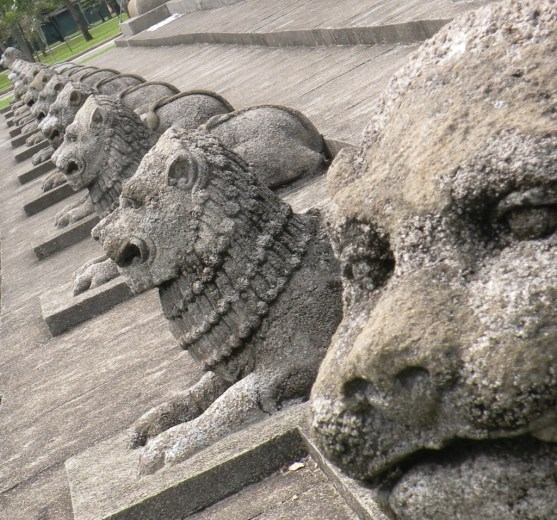 A Line of Lions