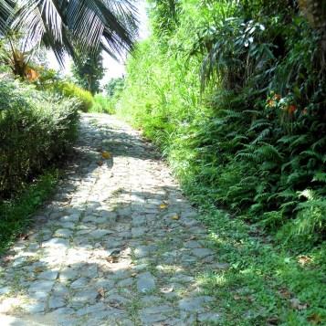 Cobbled Road - Kadutannawa
