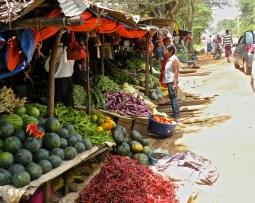 Roadside Stall, Anuradhapura Road