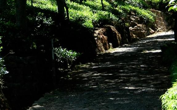 Cobbled road - Bandarawela