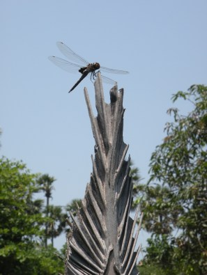 Spear and dragonfly