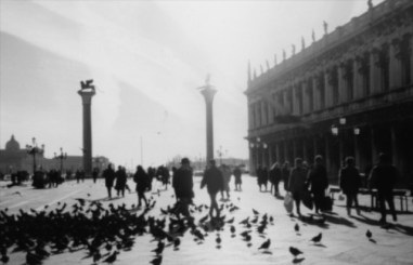 Piazza San Marco, jet trails and pigeons on Sunday morning