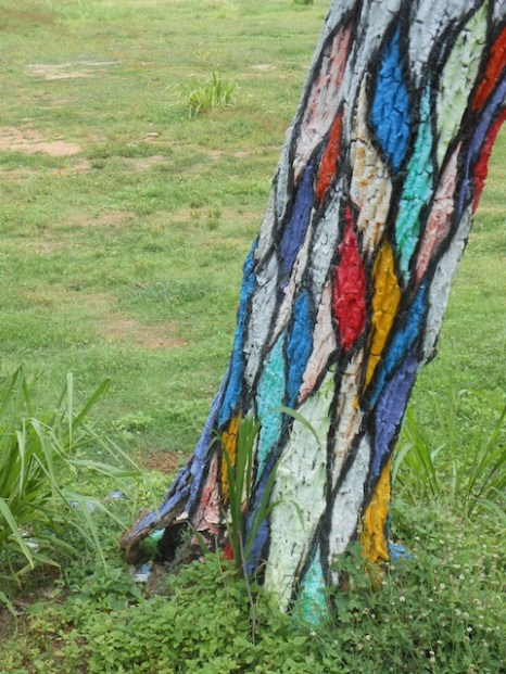 Aerial Gardens & Visible Roots - The Painted Tree, Galle Road