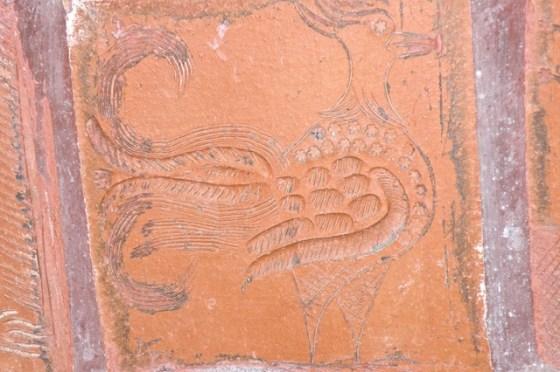 Brief - terracotta cockrel