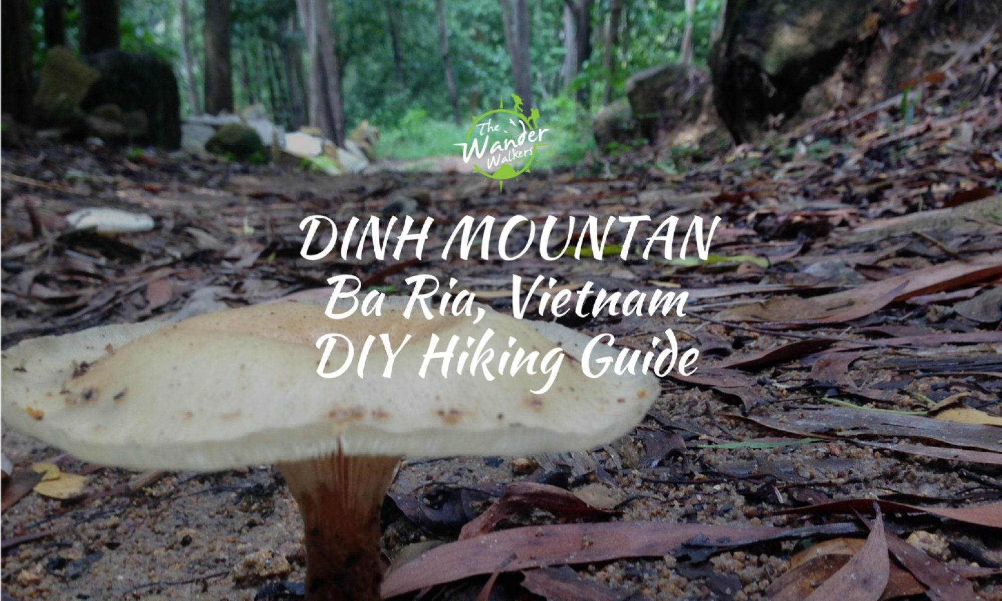 nui dinh mountain guide