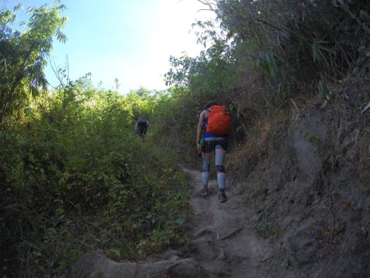 The second part of the trail is the first assault with vegetation providing shade to hikers.