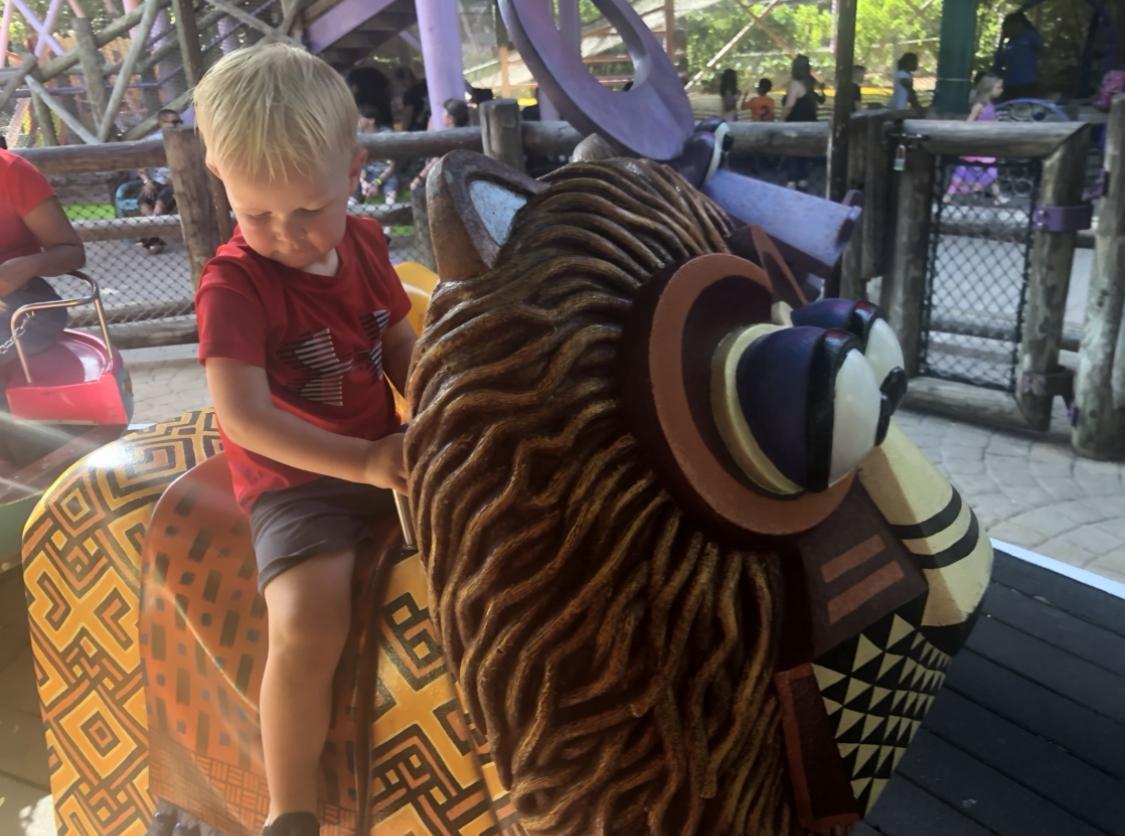 Boy on Lion Carousel