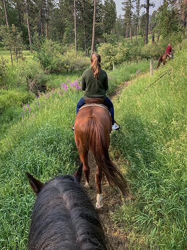 Horseback Riding Norbeck Wildlife Preserve Black Hills National Forest