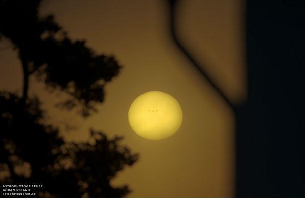 Sunspot 1654 capturó al amanecer sobre Frösön, Suecia por el astrofotógrafo Göran Strand el 14 de enero de 2013 (Crédito: Göran Strand / Spaceweather )