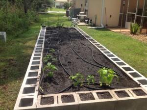 garden9