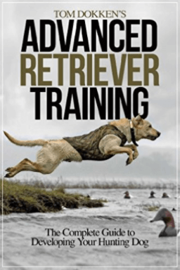 Best Gun Dog Training Books