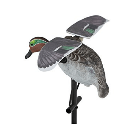 Green Wing Decoy
