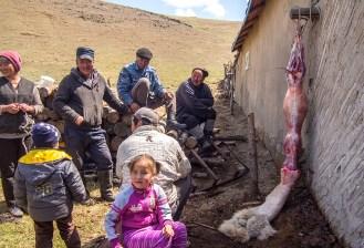 wayfinding-mongolia-gerCamp-38