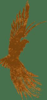 buzzard-feint copy