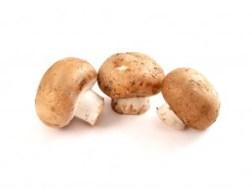 plant-based mushrooms