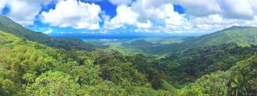 Spring Break in Puerto Rico
