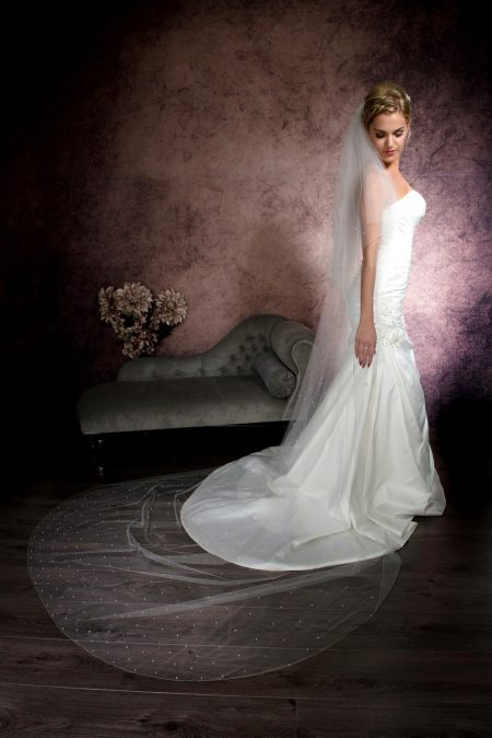 Serena – two layer cathedral length veil with crystals falling stars