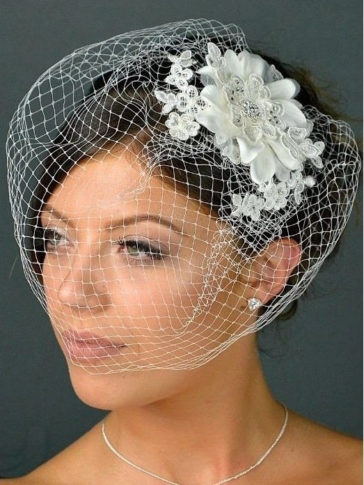 Closeup of bride wearing lace birdcage veil tlh3042