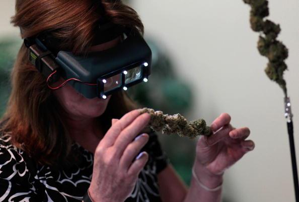 Need a job? Get work in marijuana Industry!
