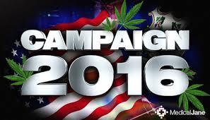 Essential info: Presidential candidates' cannabis views