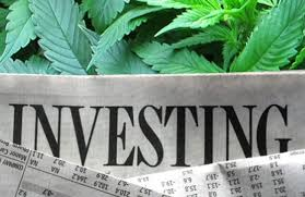 5 Cannabis Stocks to Invest in Before Election Day