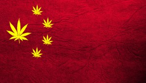 Why Isn't Anyone Talking About China And Its Bid To Rule The Cannabis Industry?