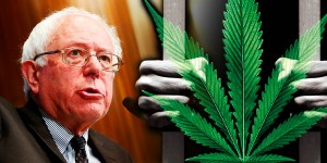 Bernie Sanders just launched a massive petition to legalize weed nationally
